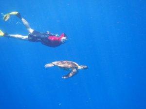 アオウミガメとツーショット