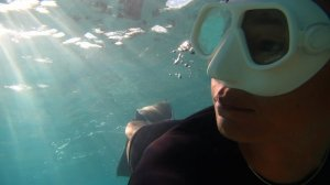 Sunrize snorkel