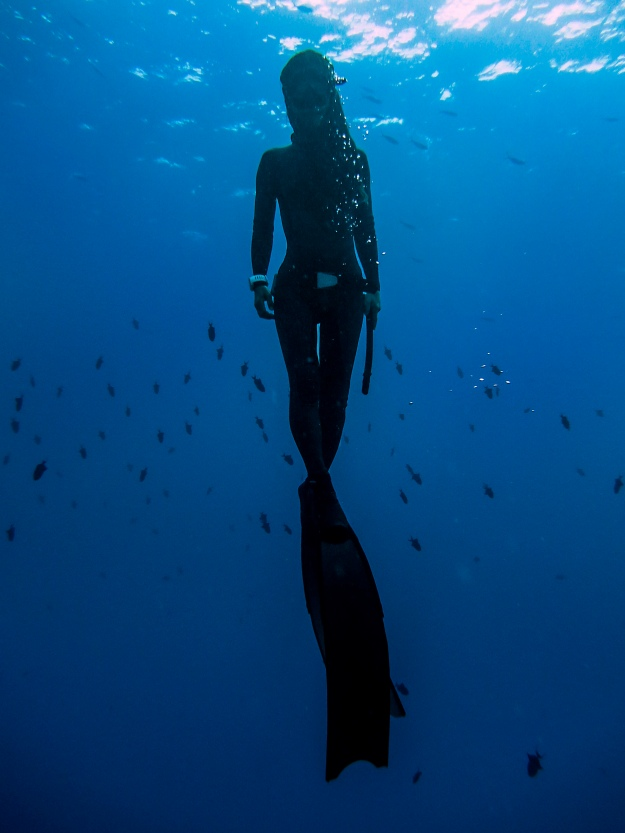 Freedive05